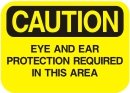 ear and eye protection required